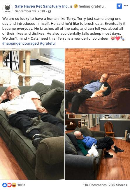 cat grandpa