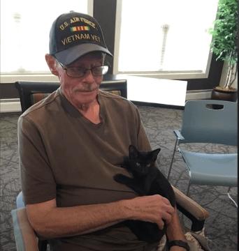 cat and vet