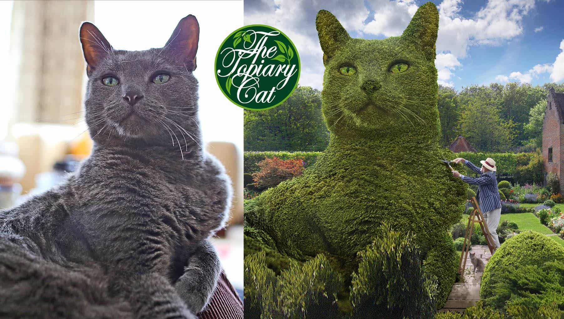 Topiary Cat