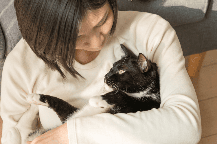 strengthen your bond with your cat